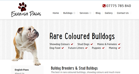 english-paws-web-design